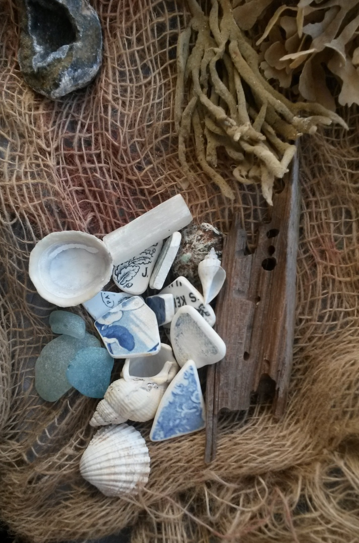 nautical image of shells, driftwood, sea glass, seaweed, sea-worn pottery shards